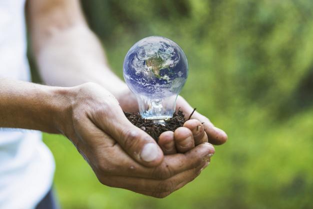 Pungile bio în contextul protejării mediului