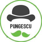 Pungi biodegradabile de la Pungescu